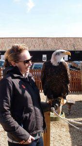 eagle-and-me